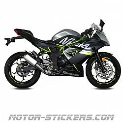 Kawasaki Ninja 125 2019